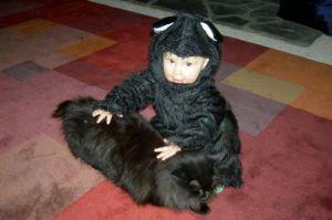 sistercats